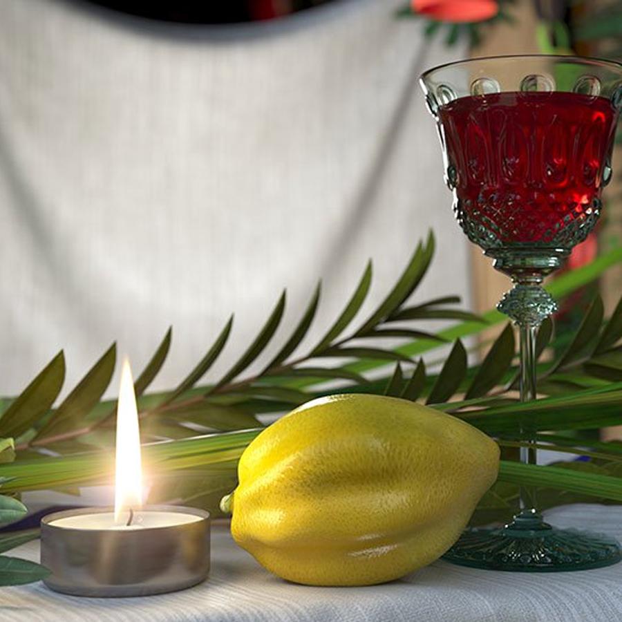 Shabbat Sukkot Dinner